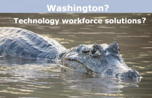 Washington Technology Workforce Solutions?