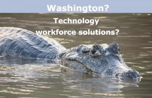 Washington Technology Workforce Solutions?